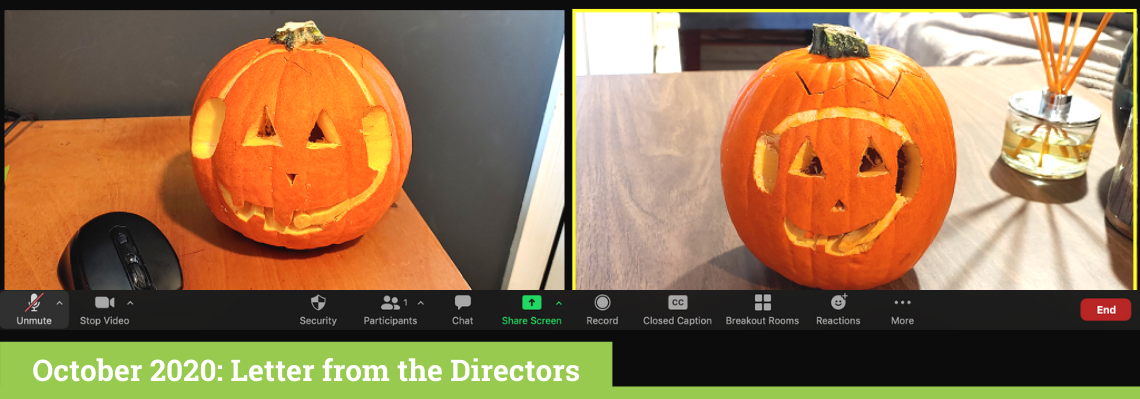 October 2020 Letter from the Directors Banner, Pumpkins on Zoom by Olivier Gagné