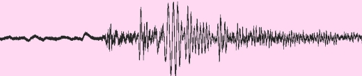 For Second Time in September, Carnegie's Seismometer Records Devastating Mexican Earthquake